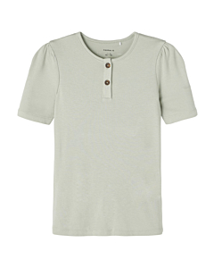 name it FJO t-shirt / Desert sage